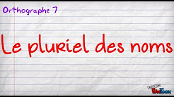 LE PLURIEL DES NOMS EN FRANÇAIS